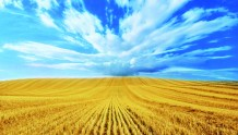 加拿大购买农场注意事项